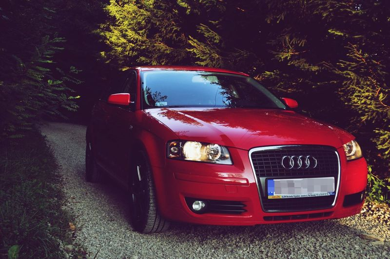 Car Audi FourRings Tree Red Road Vehicle First Eyeem Photo Canon Canonphotography CanonD5000 Nowy Sacz