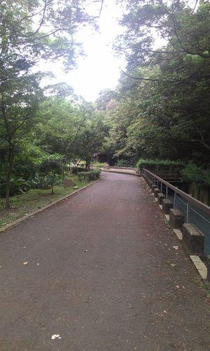 還有很多路要走... Road Bike 三坑 Walking Walking Life