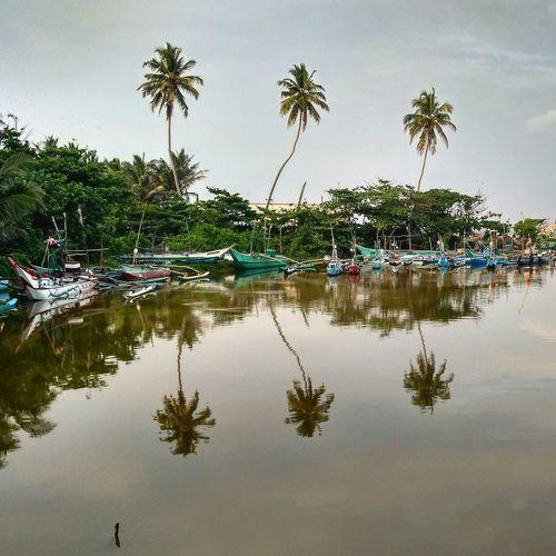 Dodabduwa harbor, view from bridge Reflection Palm Tree Tree Water Travel Lake Outdoors Reflection Lake Day Nature Sky Sri Lanka Hikkaduwa Boat Sail Fisherman Ocean River Dodanduwa Morning Boats
