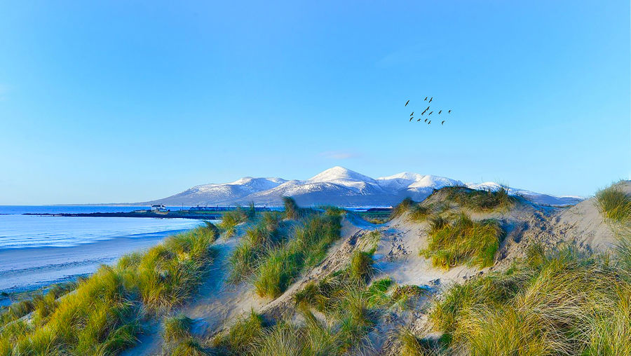 The Mourne