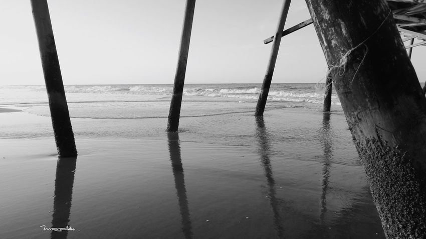 Black And White Friday EyeEm Selects Water Sea Nature Beach No People Scenics Sky Tranquil Scene Day Horizon Over Water Beauty In Nature Tranquility Outdoors Tree