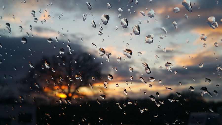 Trees against cloudy sky during sunset seen through wet window