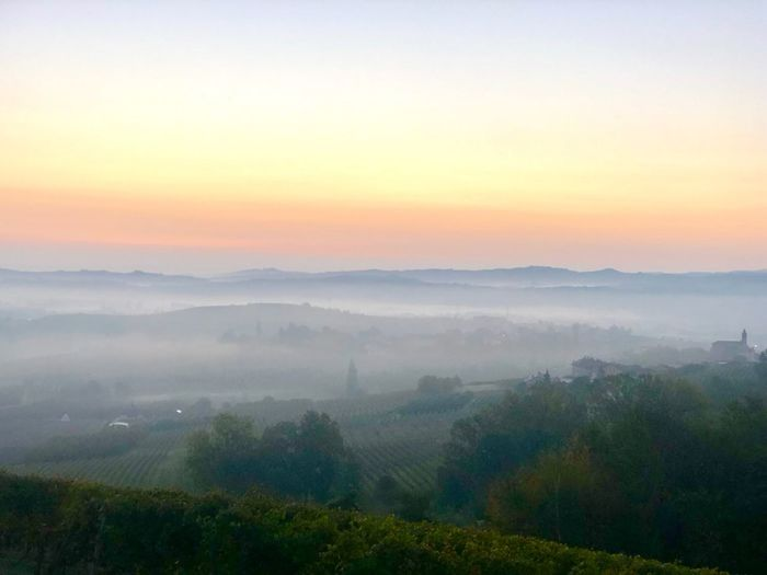 Bruma Colors Alba Nebbia Vigneti Roero Langhe Scenics - Nature Beauty In Nature Tranquil Scene Sky Environment Tranquility Sunset Fog Landscape Non-urban Scene No People