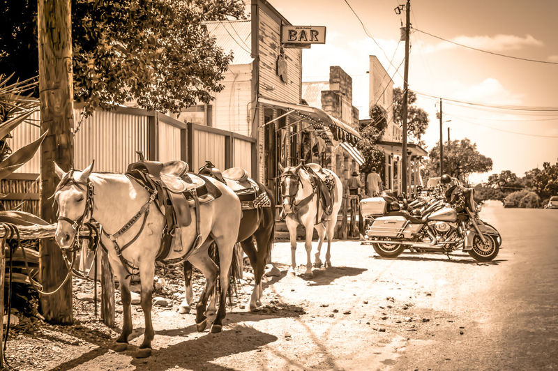 Bandera, Texas, Cowboy Bandera Pentax Pentax K-3 Texas Landscape Horses Motorcycles Motorcycle Photography Cowboys Cowgirls Bandera Texas