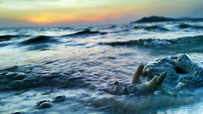 Chilling Morning Beach Beach Photography