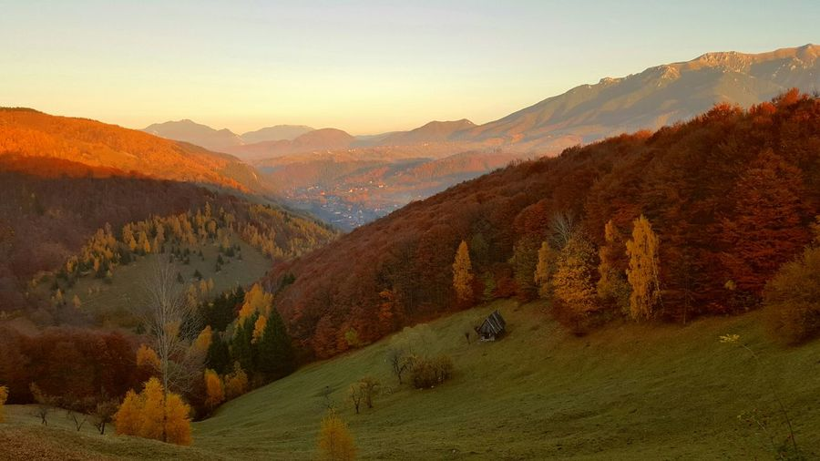 Trees on mountains during autumn at sunset