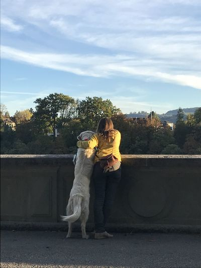 Friends Dogs