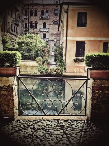 Check This Out Buranelli My Favorite Place From My Point Of View Treviso Veneto Water Canal IPhoneography Italian Veneto Italy Peaceful Treviso, Italy Italy🇮🇹 Walking Around Architecture Italy Old Town Taking Photos Bridge Water Reflections