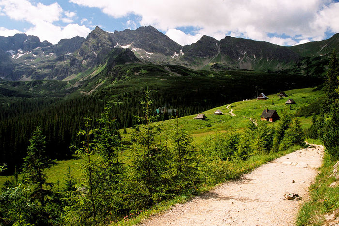 Analogue Photography Hala Gasienicowa Hiking Tatra Mountains Tatry The Week On EyeEm Beauty In Nature Film Photography Filmisnotdead Grass Green Color Hala Gasienicowa Hiking Trail Hut Mountain Mountain Range Mountain Shelter Nature Scenery Scenics Shelter Tranquility Tree Valley