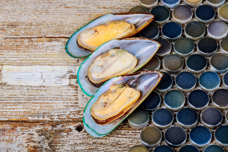 fresh seafood mussels ready for cooking seafood, close-up Cuisine SHELLFISH  Seafood Appetizer Close-up Food And Drink Freshness Gourmet Gourmet Food Healthy Eating Lemon Mollusk Mollusk Shell Mussel Mussel Shell Mussels Musselshell Prepared, Market Ready-to-eat Seashell Seashells Shell