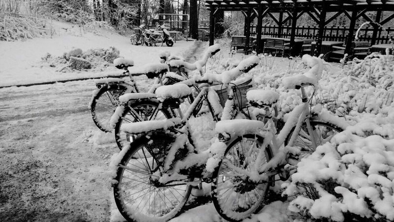 Winter Snow Snow ❄ Outdoors No People Day Bicycle Transportation Bike Bikes Sweden Godaminnen