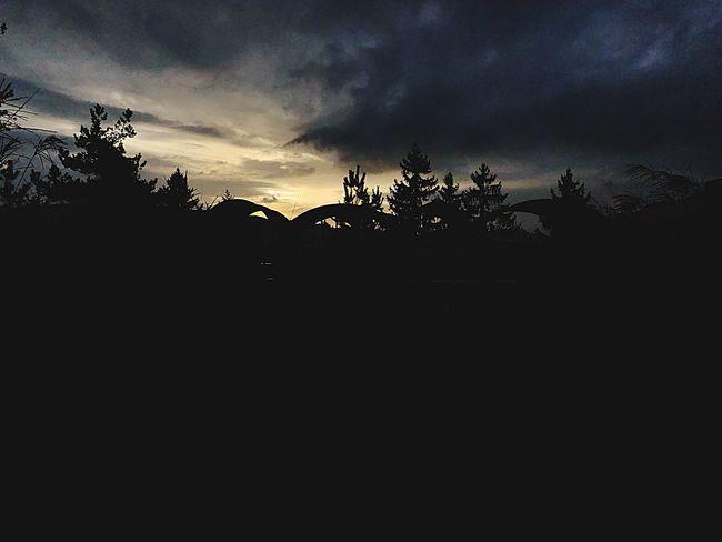 Perspectives On Nature Zurich, Switzerland Sunset Wintertime Hottea Lovetime Cloud - Sky First Eyeem Photo