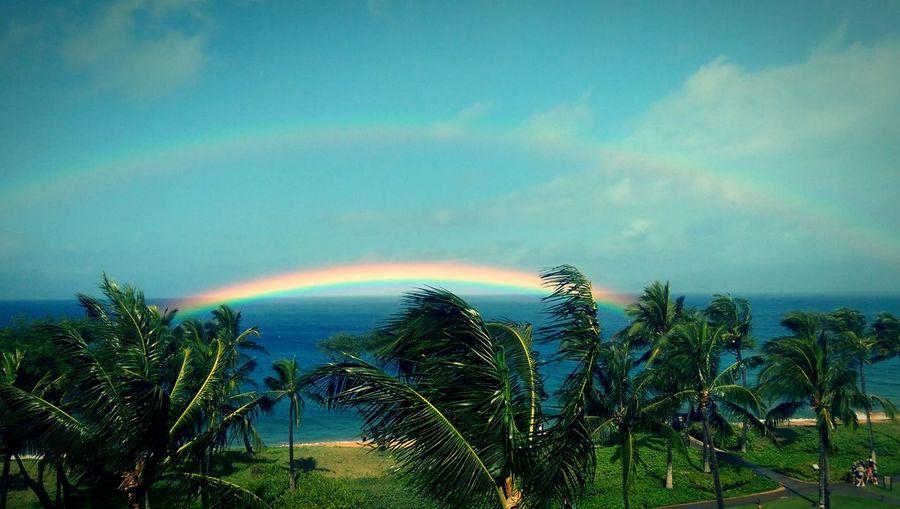 Hawaiian double