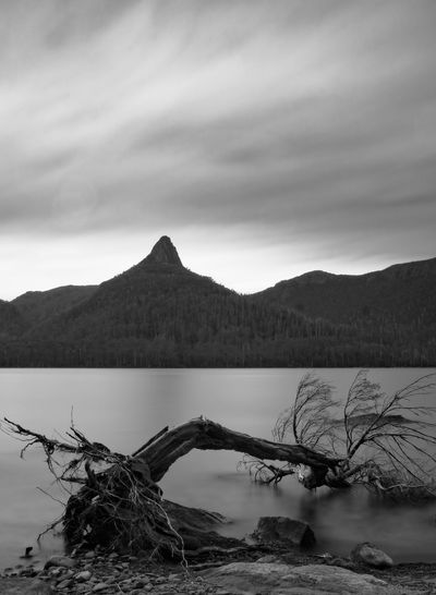 Moody highlands shot from Echo Point looking across Lake St Clair to Mount Ida. Taken on 3 day canoe trip of the lake during the holidays. Mountain Landscape Lake Water No People Nature Beauty In Nature Extreme Weather Outdoors Eyeem Australia Olympus OM-D E-M5 Mk.II Long Exposure Monochrome Tasmania Lake St Clair, Tasmania Mount Ida Dead Tree Cloud - Sky Scenics Betterlandscapes