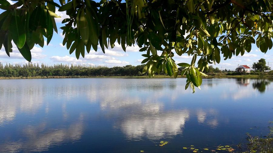 Beautiful Beauty In Nature Blue Sky EyeEm Best Shots EyeEm Nature Lover EyeEmNewHere Leaf Nature Nature Lover No People Outdoors Reflection Reflection Lake Reflection Of The Clouds And Sky Sky Tree Water BaiTaEwWorld