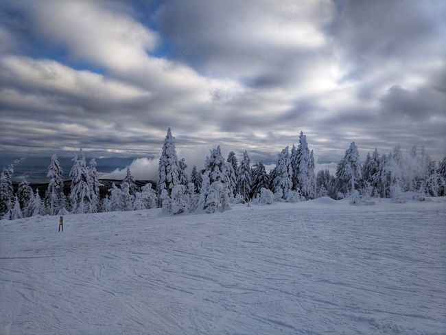 Starting off the skiing season in Czechia Cold Temperature Winter Snow Weather Tranquility Nature Tranquil Scene Beauty In Nature Cloud - Sky Scenics White Color Sky Landscape No People Outdoors Frozen Day Tree Google Pixel F/2.0 ISO 50 via Fotofall