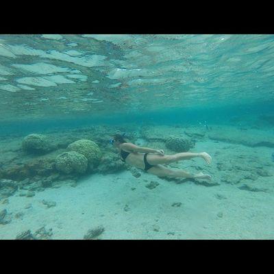 Happiness ♡ 🌊😚 808love Instapict Hi_life Instahi Ocean_life Lovemyhawaii Saltwater Saltyhair Sunkissedskin Mermaid Goprohero3 Goproproof Getwet