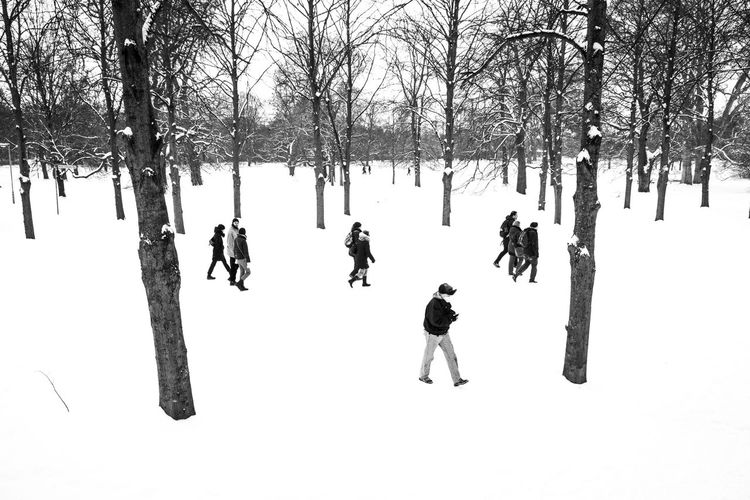 People on snow covered field