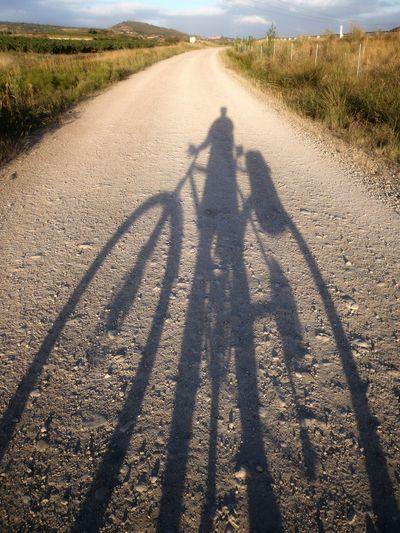 Sunny Morning Camino Schattenspiel  Mountainbike Jacobsweg