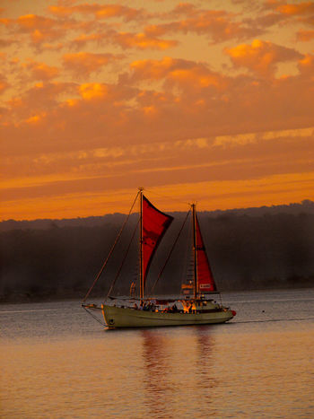 Red Sails Sunset Port Vila, Efate, Vanuatu . Efate is an island in the Pacific Ocean which is part of the Shefa Province in The Republic of Vanuatu. It is also known as Île Vate. It is the most populous (approx. 66,000)[1] island in Vanuatu. Efate's land area of 899.5 square kilometres (347.3 sq mi) makes it Vanuatu's third largest island. Most inhabitants of Efate live in Port Vila, the national capital. Its highest mountain is Mount McDonald with a height of 647 metres (2,123 ft). During World War II, Efate served an important role as a United States military base. Cloud - Sky Dramatic Sky Melanesia Mode Of Transport Nature Nautical Vessel No People Outdoors Pacific Pacific Ocean Romantic Sky Sailboat Sailing Sailing Ship Sea Sky Sunset Suspension Bridge Tourism Tourist Attraction  Transportation Travel Travel Destinations Vivid International Water