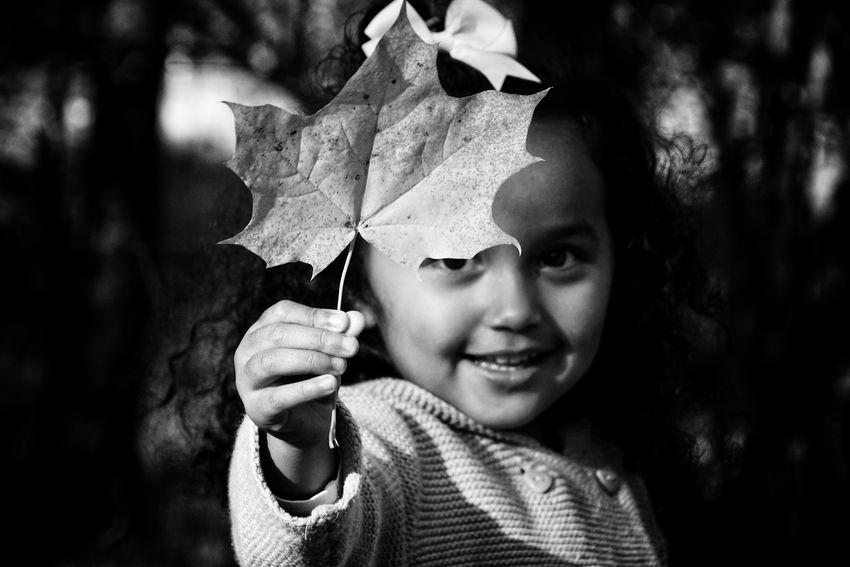 Preschooler Niklas Storm Okt 2018 Child Childhood Headshot Portrait Close-up Fall Leaves Change Autumn Maple Leaf Fallen Leaf Season  Autumn Collection A New Beginning