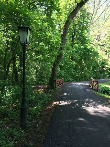 Bridge Lamp Way