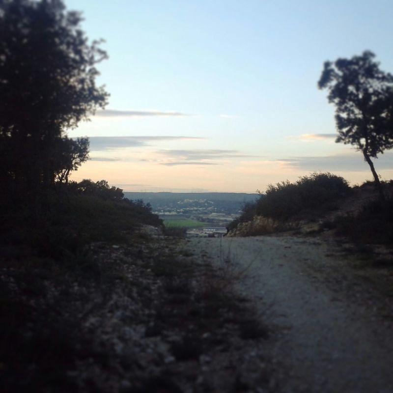 Vue sur Rochefort Du Gard Trailrunning Trail Running Trail Running Les Angles Gard