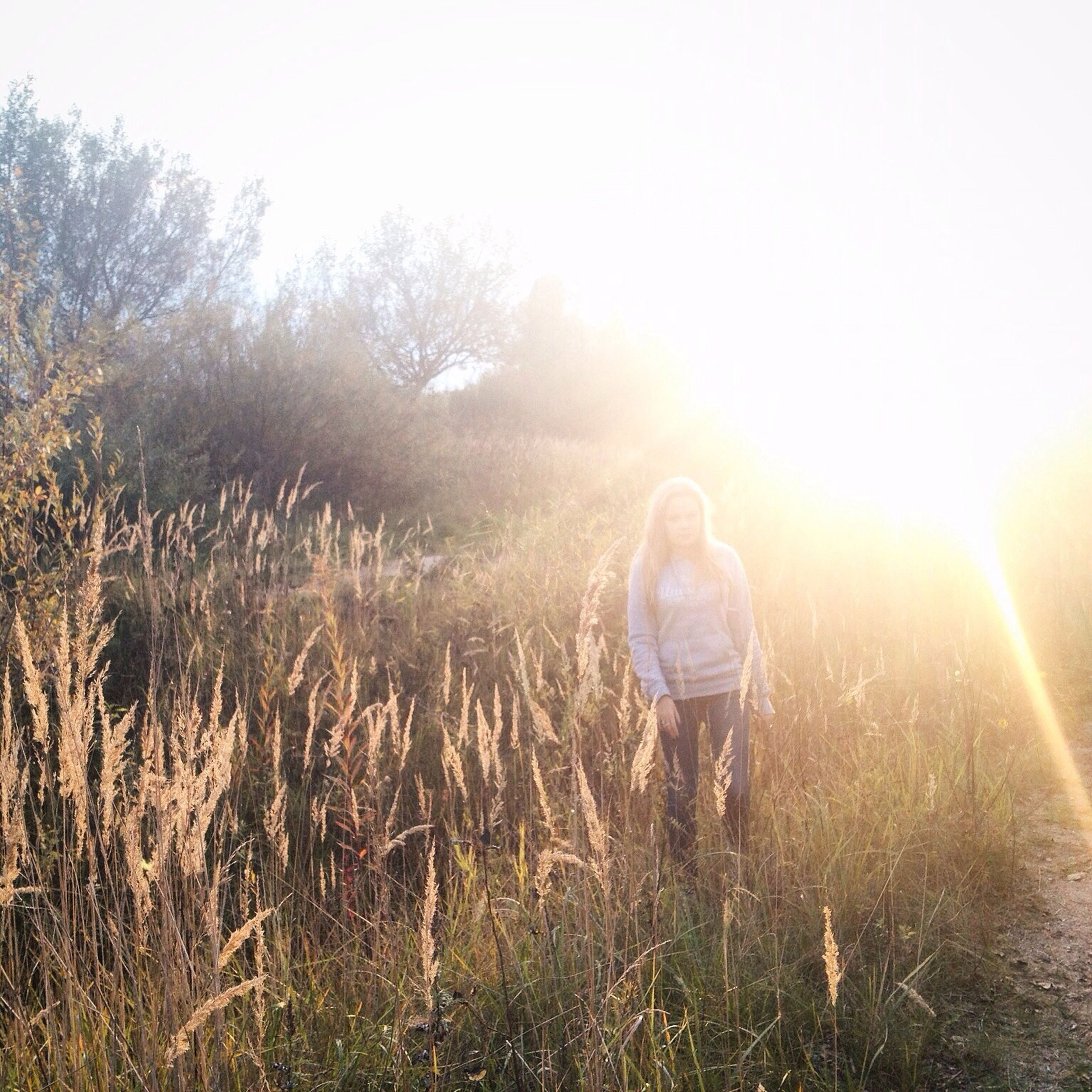 lifestyles, field, leisure activity, grass, sun, rear view, casual clothing, sunbeam, sunlight, full length, lens flare, standing, landscape, nature, plant, clear sky, tranquility, growth