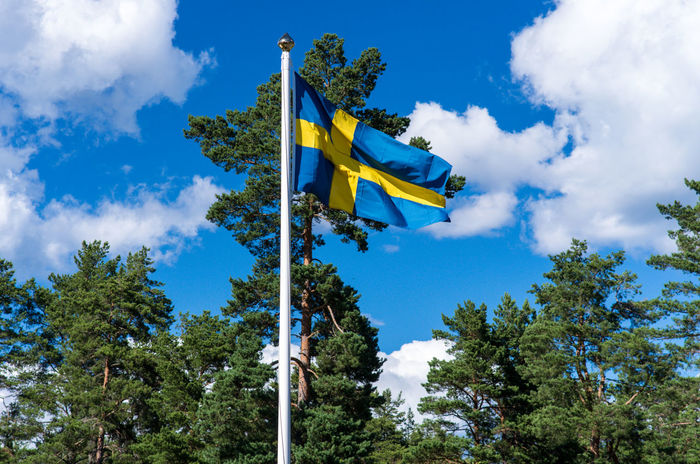 Blue as the swedish sky and yellow as its sunshine Swedish Flag Beauty In Nature Blue Camp Ground Cloud - Sky Dannebrog Day Flag Low Angle View Nature No People Outdoors Patriotism Sky Tree Yellow