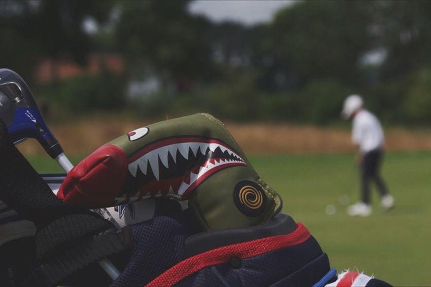 Focus On Foreground Baseball - Sport People Men