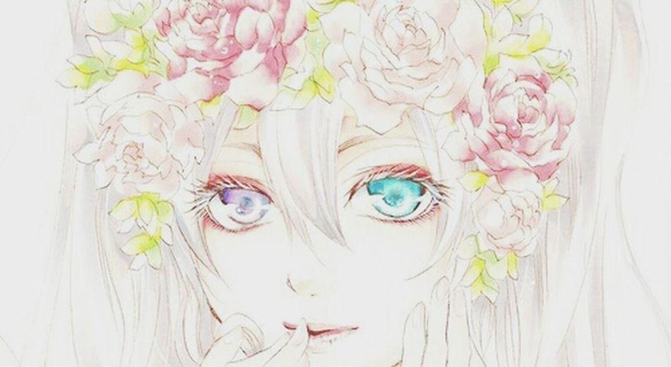 Ciel Cielgirl Kuroshutsuji Anime ♡