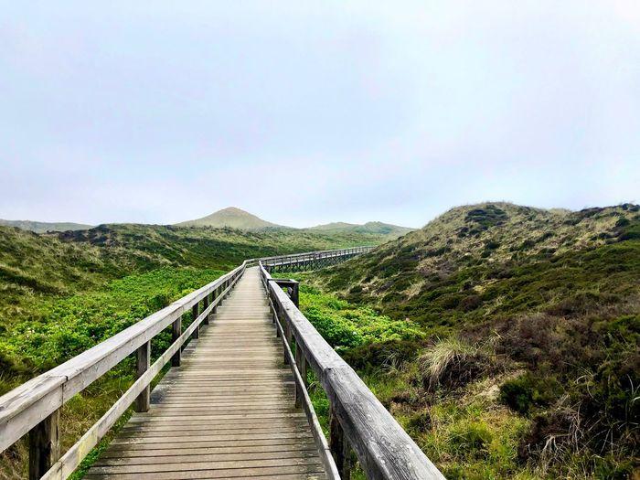 Narrow walkway along landscape against sky