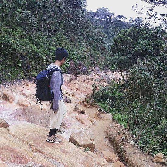 Boy Hortonplains Park Nuwaraeliya SriLanka Stone Keepwalking Jump