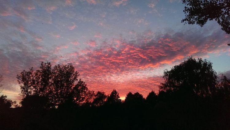 Así se va el día..... Sunset