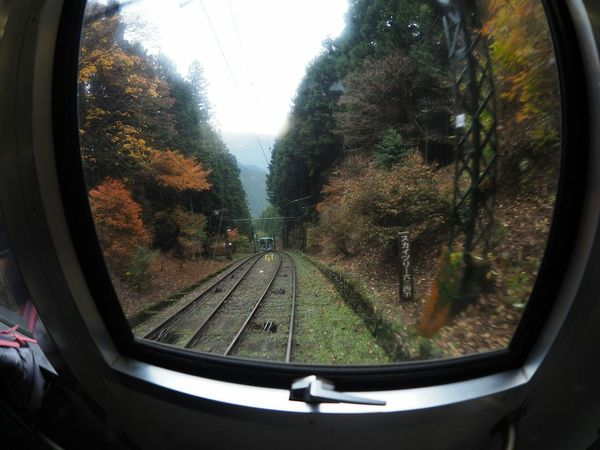 Olympus Om-d E-m10 Taking Photos View From My Point Of View Japan Photography Relaxing The Colors Of Autmn Slope Autumn Leaves Autumn Autumn Colors Train From My Window Check This Out