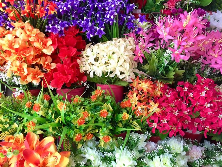 Multi colored background from plastic flowers Flowering Plant Flower Plant Vulnerability  Fragility Beauty In Nature Freshness Growth Petal Nature Flower Head Day Multi Colored High Angle View Inflorescence Close-up No People Variation