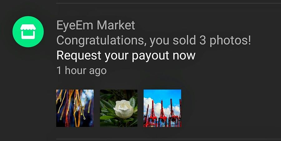 Thank you so very much all my friends.... It's always a fantastic feeling to know that I sold some photos🙏🙏🙏🙋🙋🙋😁😁😁🌟🌟🌟😘🎉🎉🎉🎶🎶🎶 Thank You Eyeem Thanks All My Friends Around Eyeem Thank You EyeEm + Getty Images Thank You For Your Suport Fran Eye Em Nature Lover EyeEm Gallery Exceptional Photographs EyeEm Masterclass