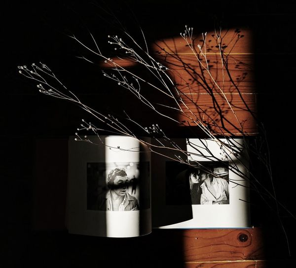 Book Books Booking A Room Booklover Shadows & Lights Indoors  No People Lieblingsteil