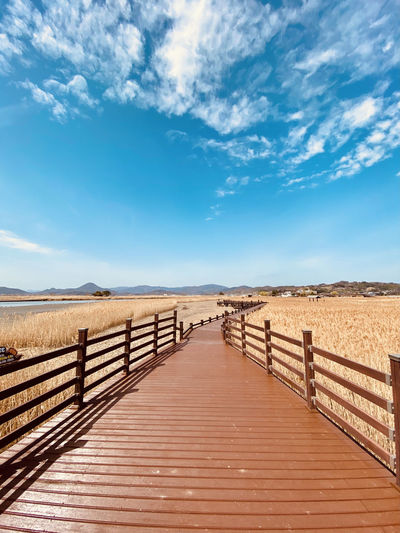 Boardwalk leading towards wetlands against blue sky