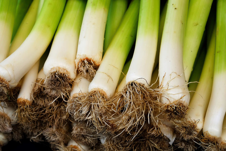 Close-Up Of Scallions At Market For Sale