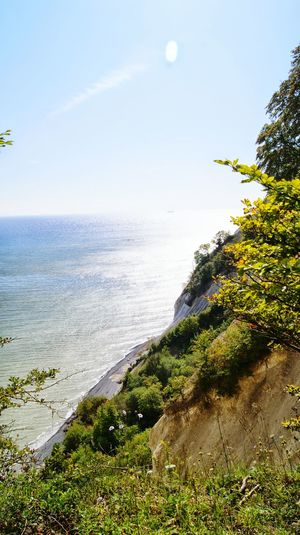 Møns klint... Møns Klint Landscapes With WhiteWall Landscape Denmark Sea View Sea Water Beach Sand Cliff Cliffside Tree Bush Sky Clouds Nature Danish Nature Danish Nature ♥ Hanging Out Taking Photos Relaxing Trip Enjoying Life Outdoors Danmark