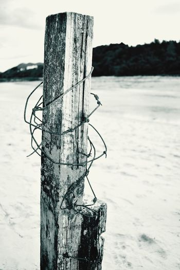 Nature Beach Wooden Post Barbed Wire