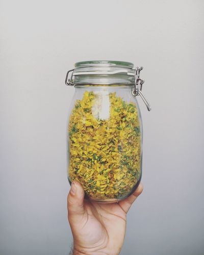 Jar Human Hand Human Body Part White Background One Person Yellow Studio Shot Holding Food And Drink Food Close-up Healthy Eating Indoors  Freshness Day Ready-to-eat People Healing Herbs Medicinal Plant Plant Plants Tea Nature Nature Photography Johanniskraut