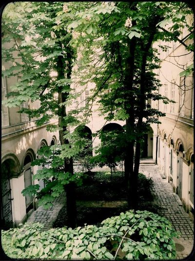 Architecture Chestnut Downtown Garden, History No People Quadrangle Wood