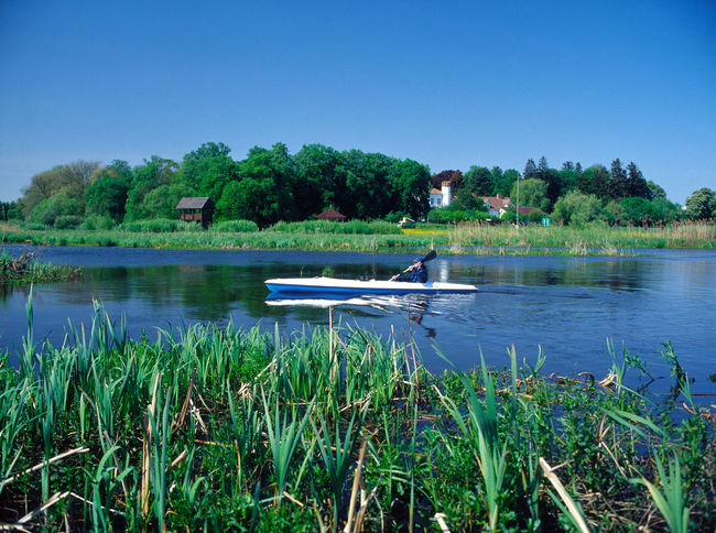 Beauty In Nature Blue Canoeing Clear Sky Day Growth Kajak Kayak Kayaking Narew Narew Narew River Narwianski National Park Nature Nautical Vessel No People Outdoors Poland Reflection River Scenics Tranquil Scene Tranquility Water