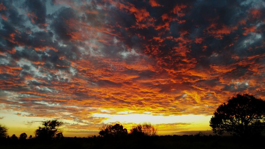 Sunset Dramatic Sky Sky Cloud - Sky Scenics Outdoors Low Angle View Beauty In Nature Landscape South Africa African Beauty EyeEm Best Shots EyeEm Nature Lover Eyeemphoto Photography South African Sunsets