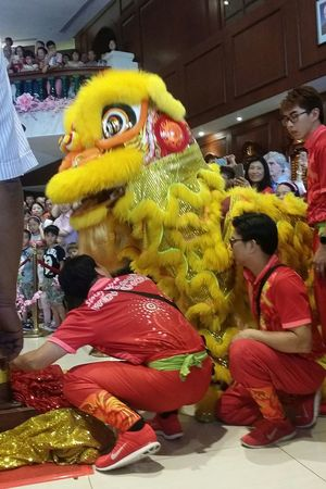 Lion Dance TROUPE Lion Head Chinese Culture Streetphotography Sg_streetphotography Singapore