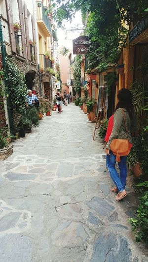 Collioure Portuguesegirl Frenchgirl ThatsMe Street Photography France SudDeFrance Enjoying Life France 🇫🇷 Lovethis SouthFrance Streetphotography Flowers Nature_collection Hello World Looktoday Dayoff