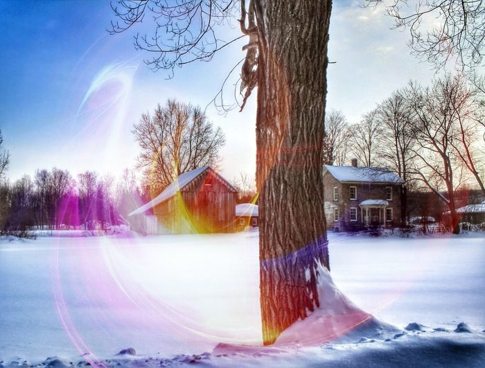 Cold Temperature Snow Winter Architecture Built Structure Building Exterior Season  Tree House Weather Bare Tree Tree Trunk Residential Structure Sky Field Rainbow Nature Outdoors Multi Colored Day HarrietTubman Harriet Tubman Home
