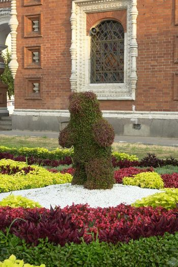 Bear Architecture Bear Sculpture Beauty In Nature Building Exterior Built Structure Day Flower Flowerbed Freshness Green Sculpture Growth Multi Colored Nature No People Outdoors Plant Plant Sculpture Window